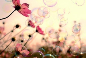felicità--